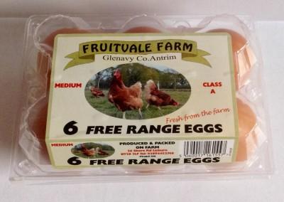 6 Egg Medium Box