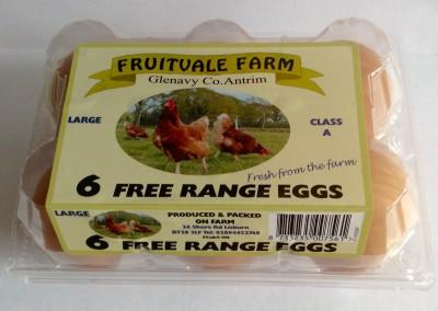 6 Egg Large Box